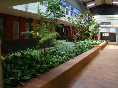 Interior landscaping ecoman durban for Interior landscape design