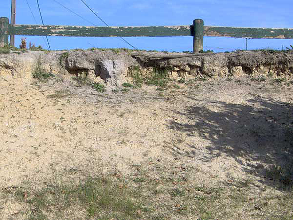 Extensive erosion damage on sports field bank