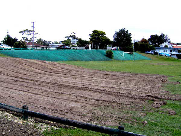 sports field bank after being hydroseeded